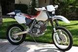 Oil Filter Xr400 Pictures